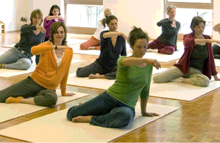 Feldenkrais classes in  Virginia